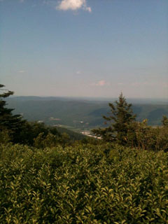 picture of the Mt. Greylock