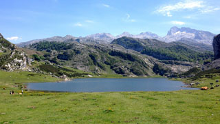 picture of the Lagos de Covadonga