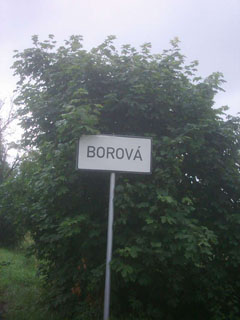 picture of the Borová