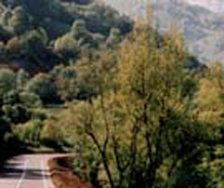 picture of the Col du Somport