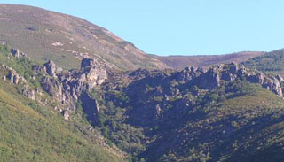 picture of the Noceda