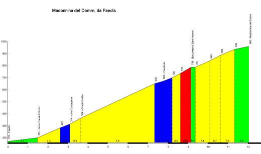 profile Madonnina del Domm